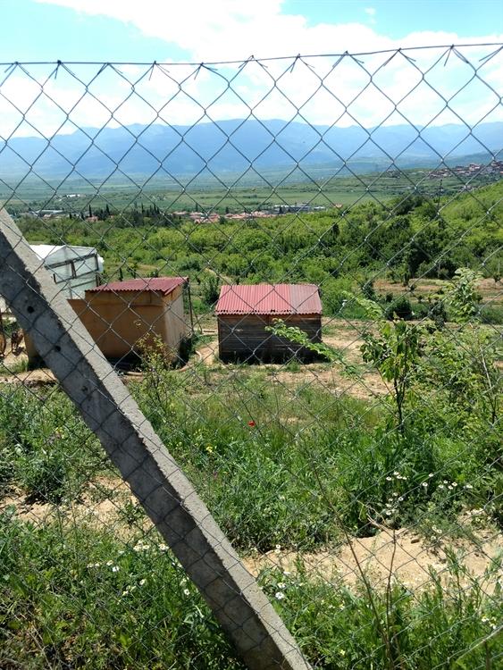 farm land property vetren - 4
