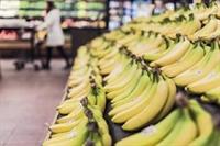 established supermarket putnam county - 1